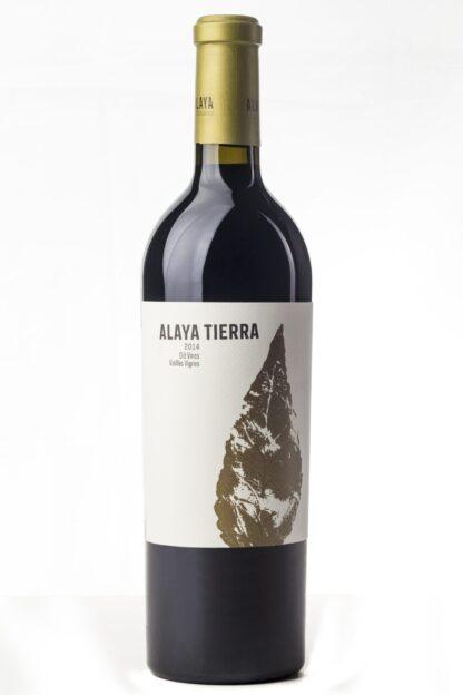 Cinq wines- Vinos en Guatemala- alaya tierra